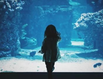 Little girl standing in front of an aquarium