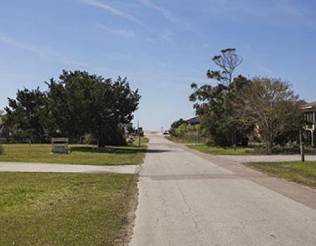 Sunny, tree lined road to the beach from an Oak Island vacation rental