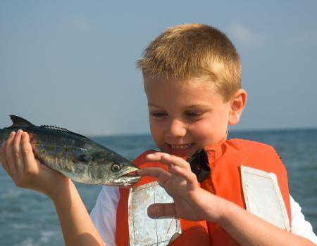 spanish mackerel oak island