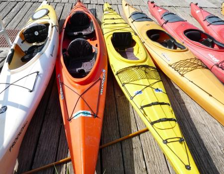 Kayaks lined up ready to be used
