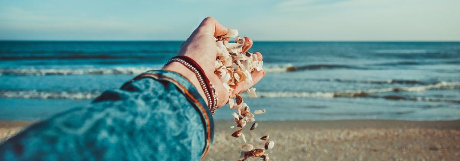 Best Beaches for Shells in Oak Island