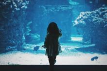 Little girl standing in front of an aquarium