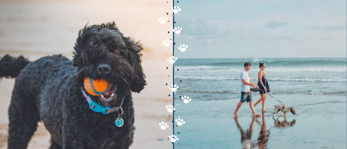 Pet Friendly Oak Island Vacation