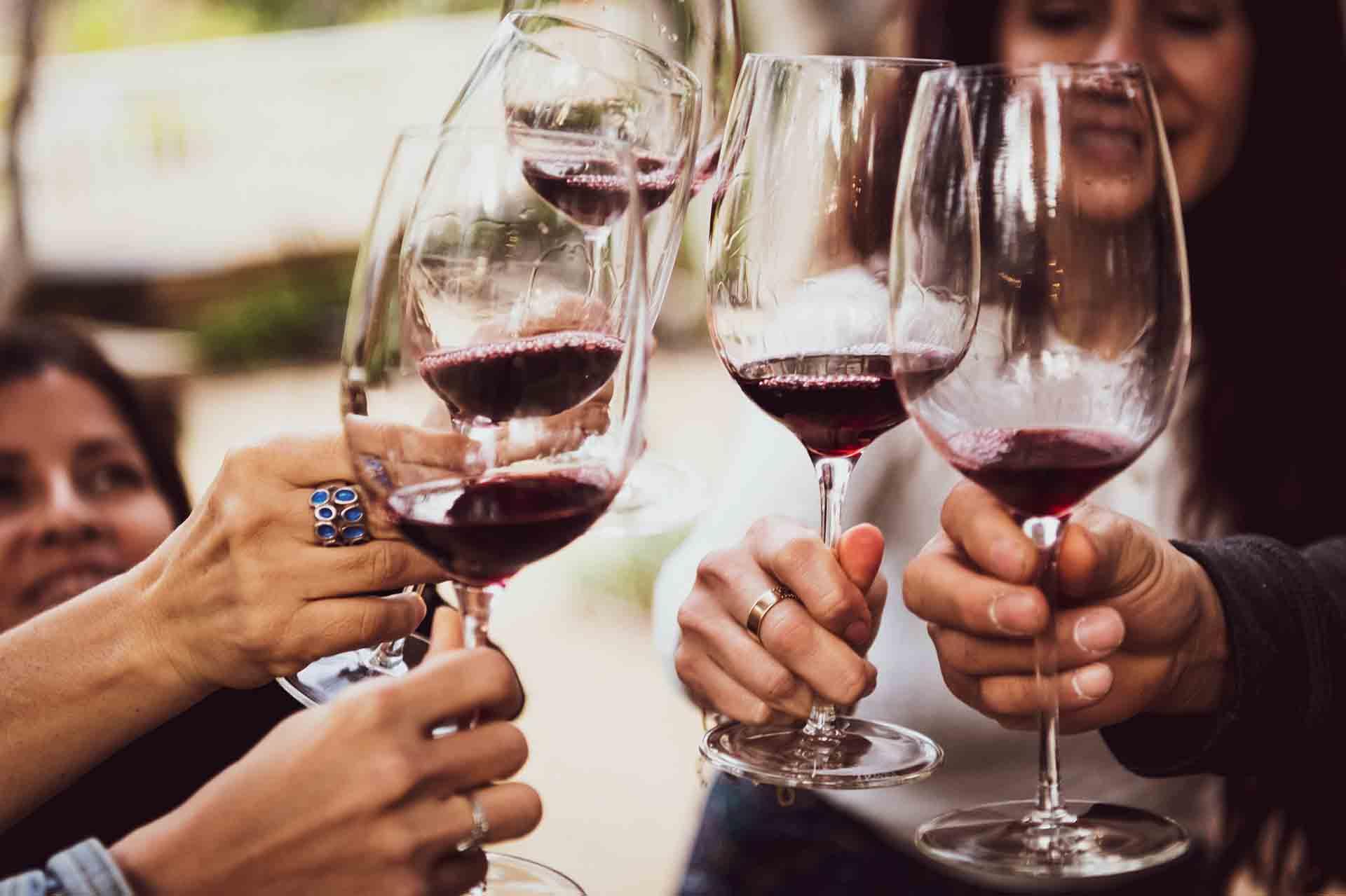 Friends enjoying wine tasting together